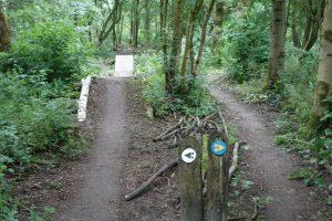 mountainbike verhuur geestmerambacht keuze