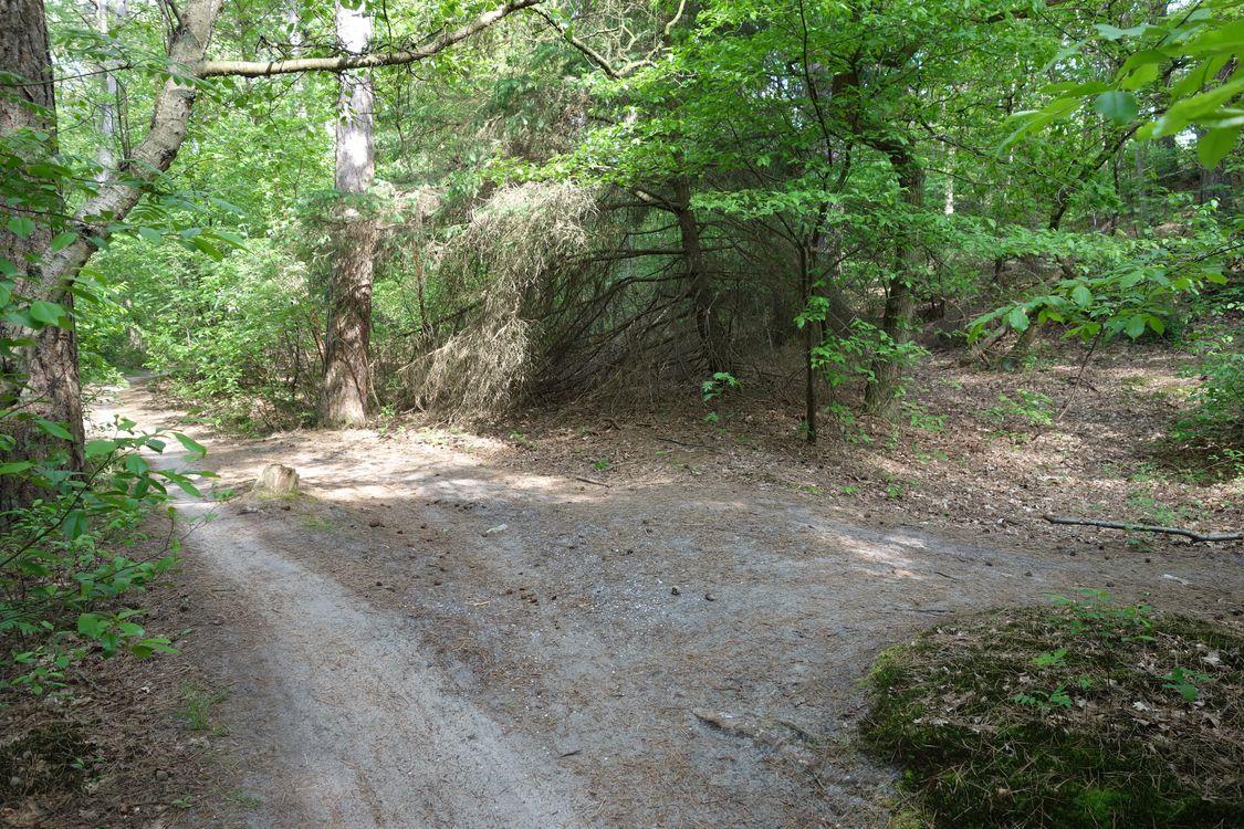 Mountainbike huren PWN gebied doorsteekpaadje
